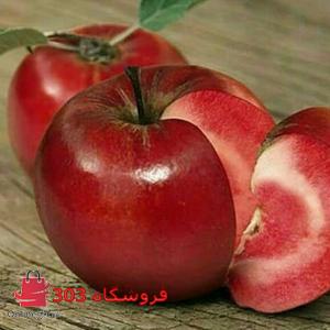 نهال سیب خونی
